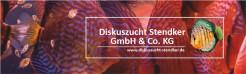 Lista de Discus Stendker para encomenda até dia 5 de Maio quarta-feira pelas 18h.