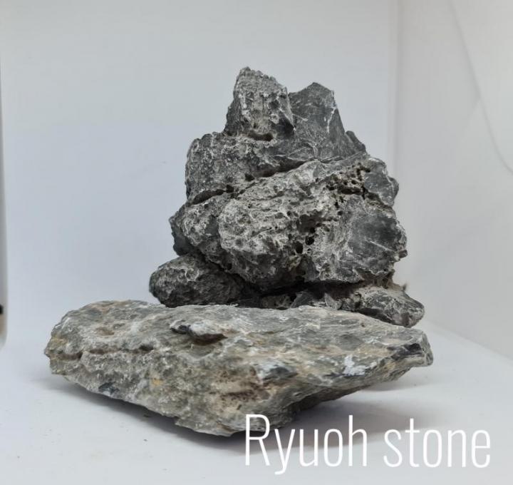 ROCHA RYUOH/SEIRYU STONE Kg